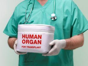 Трансплантологія як лакмус для суспільства