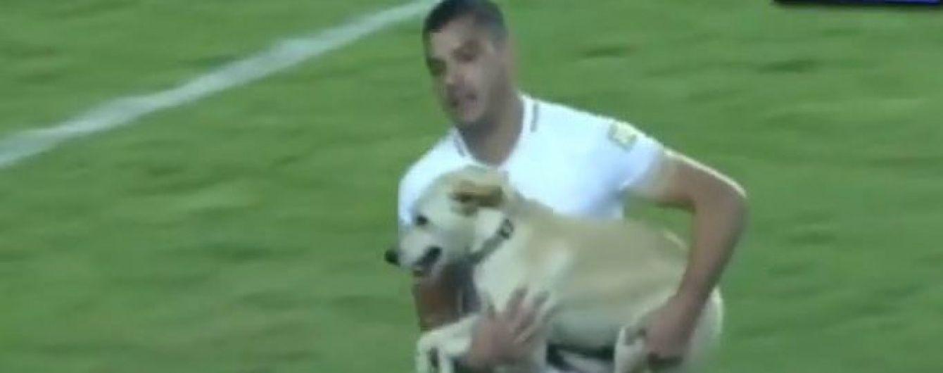 Кумедний пес-стрибунець зупинив матч Кубка Лібертадорес