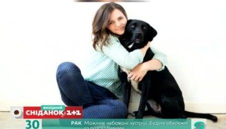 Чому у жодному разі не варто обіймати собак