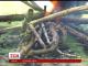 Кияни знехтували забороною розпалювати багаття в лісопаркових зонах столиці