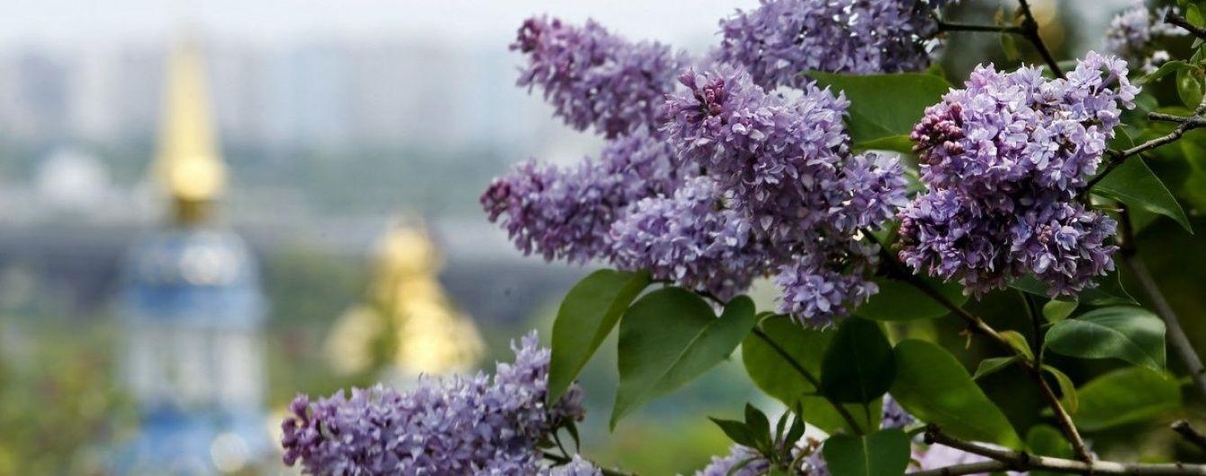 Україну затягнуть дощі з грозами, але буде тепло. Погода на вихідні