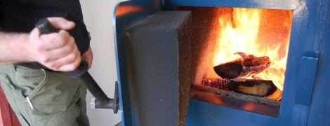 Правительство обещает субсидии владельцам печного отопления и не трогать цены на газ