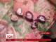 Редиску, нафаршовану наркотиками, знайшли у Дніпропетровську