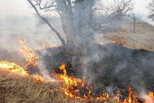 Росію охопив вогонь: у Приамур'ї палають ліси та села