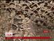 Каплицю польського містечка Кудова Здруй оздобили людськими черепами