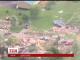 Руйнівний торнадо завдав удар по штату Кентуккі