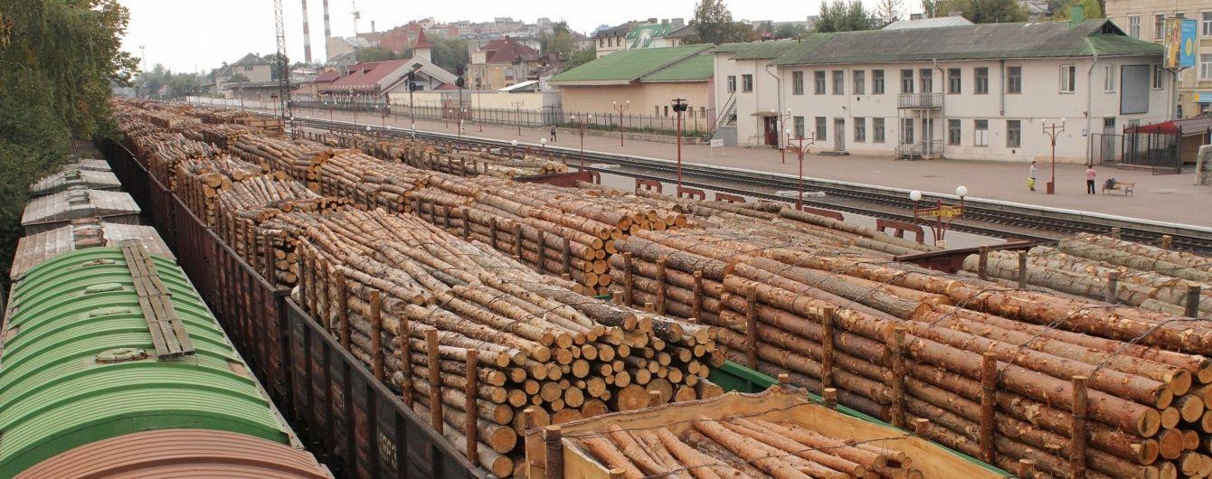Кабмін звільнив керівника Держлісагентства та заборонив будь-яке вирубування лісів