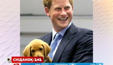 Принц Гарри появился на благотворительном мероприятии в туфлях с подошвой голубого цвета