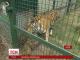 Харківський зоопарк поповнився новими звірятами