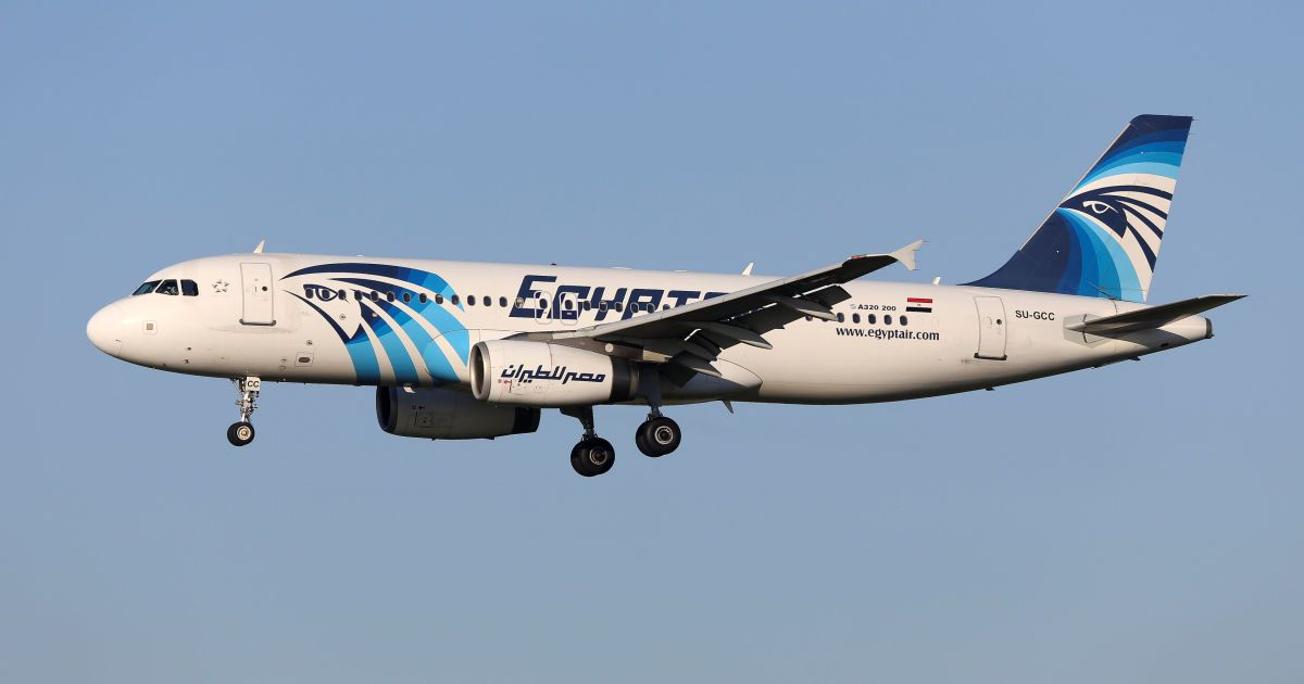 an analysis of the pilot and the plane of egyptair