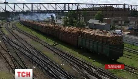 На Львовщине активисты задержали более полусотни вагонов с контрабандной древесиной