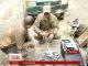 Чому українські військові не були готові до атак ворожих безпілотників