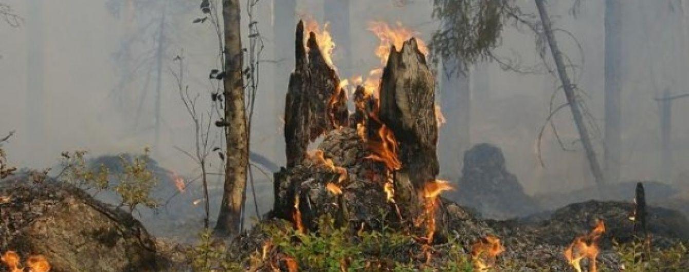 У Забайкаллі і Бурятії суттєво зросла площа лісових пожеж