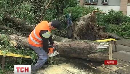 В Харькове подсчитывают ущерб, нанесенный непогодой