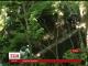 У Японії продовжуються пошуки 7-річного хлопчика