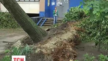 Последствия ливня и урагана преодолевают в Харькове