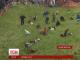 У Великобританії відбулися щорічні перегони за сиром
