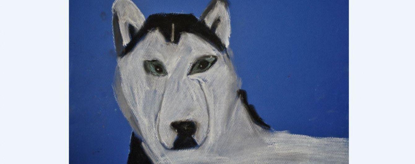 """Дивіться онлайн """"собакострім"""", присвячений Дню захисту дітей"""