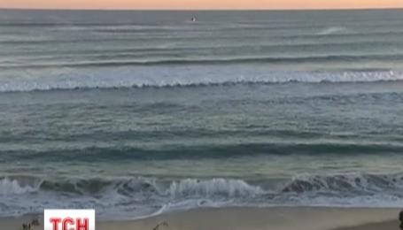 В Австралии серфер потерял ногу после встречи с акулой