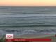 В Австралії серфер втратив ногу після зустрічі з акулою