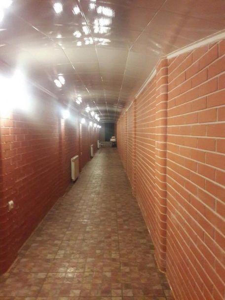 Заступник глави Миколаївської ОДА звів під маєтком тунелі з сейфами, заповненими коштовностями