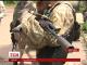 В штабі АТО оприлюднили кількість постраждалих за минулу добу