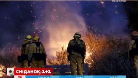 Пожежі біля Лос-Анджелеса підібралися до зіркових маєтків