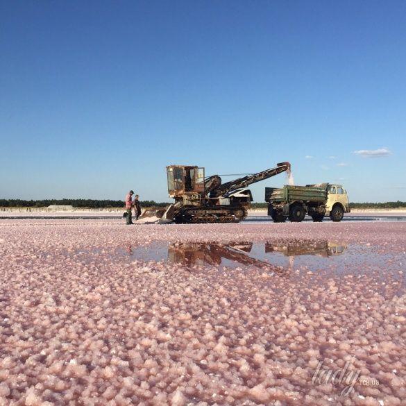 розовые озера, Херсонщина_4
