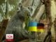 У Європейських зоопарках тварини робили прогнози матчу збірних України та Німеччини