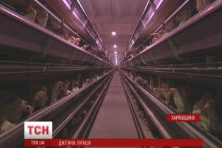 На Харківщині школяр пішов працювати на птахофабрику і впав у кому