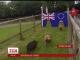 Британці ворожили на свинях за тиждень до національного референдуму про можливий вихід з ЄС