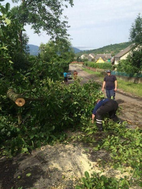 Наслідки негоди на заході України: знеструмлені області, потрощені дахи та знищені гектари посівів