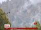 Лісова пожежа на Кіпрі стала однією з наймасштабніших в історії країни