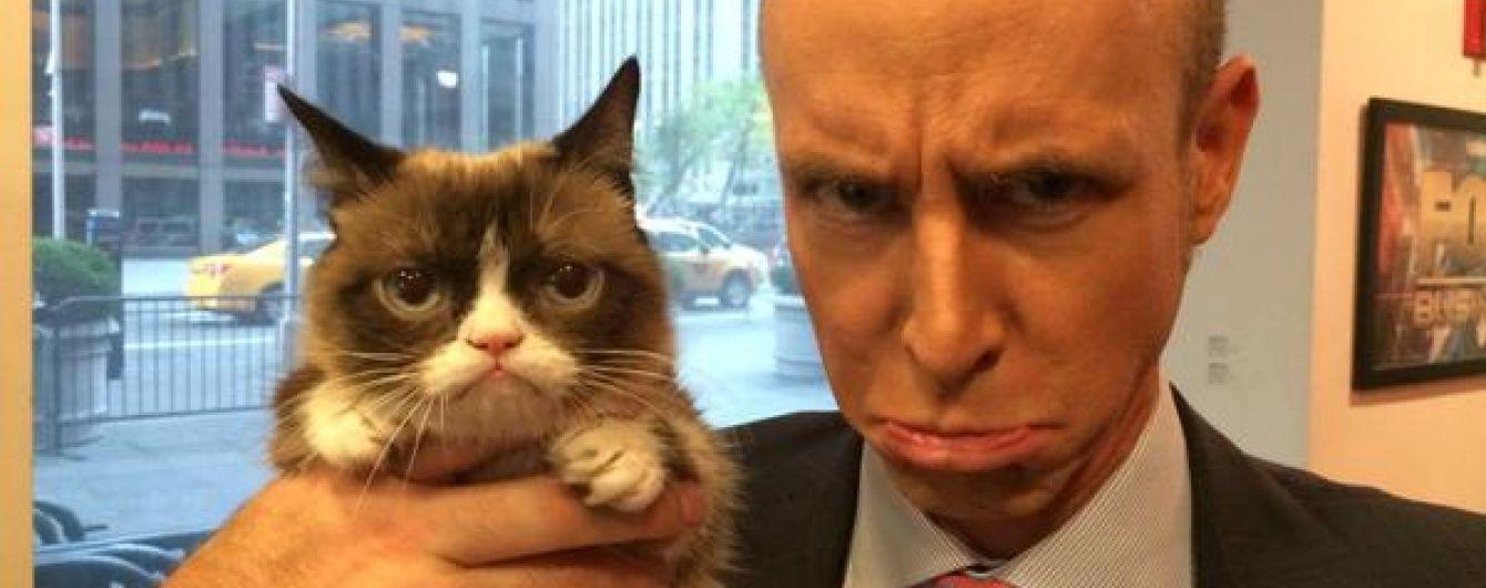 #CatsAgainstBrexit: коти виступили проти виходу Великобританії з ЄС