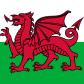 Эмблема команды «Уельс»