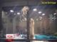 У Тайвані кошеня намагалося втекти зі своєї комірки в зоомагазині