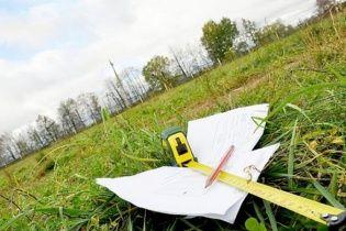 """""""Гоголівщина"""" на Київщині: журналісти з'ясували, як нардеп відібрала у селян сотні гектарів землі"""