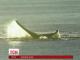 До Аргентині тисячі туристів приїхали побачити морських китів