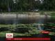 На Чернігівщині річку Остер забруднює невідома речовина