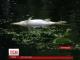 З річки Остер дістають тонни мертвої риби