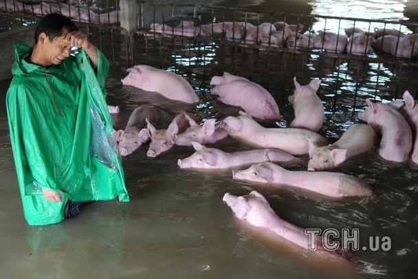 Затоплені регіони та сотні загиблих: Китай потерпає від масштабної повені