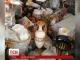 У екс-глави адміністрації Януковича в квартирі під час обшуку знайшли вази і картини