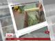 У США дорожні працівники відремонтували тріщину на дорозі, яку 45 років досліджували вчені