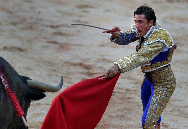 В Іспанії під час виступу бик убив матадора вперше за останні 30 років