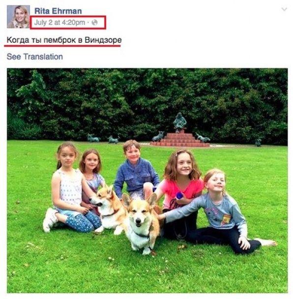 Віце-прем'єр РФ витратив більше $ 630 тисяч на перельоти собак у VIP-лайнері – ФБК