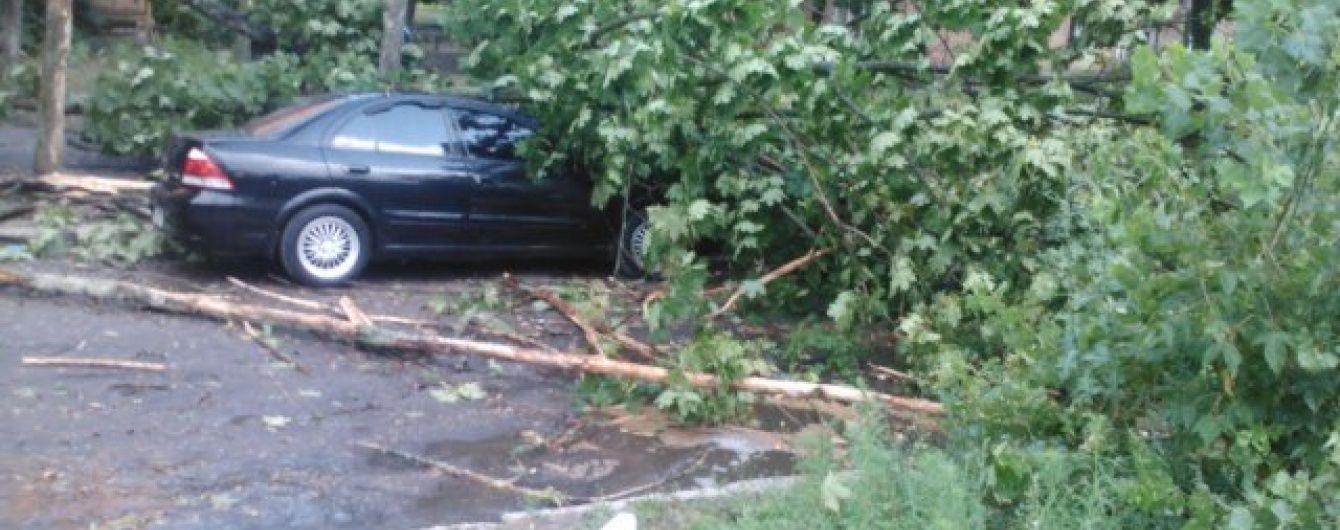 Буревій в Ужгороді виривав із корінням величезні дерева та кришив автівки