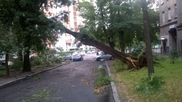 Ураган у Харкові: буревій потрощив сотні дерев та дахи, блискавка вбила чоловіка