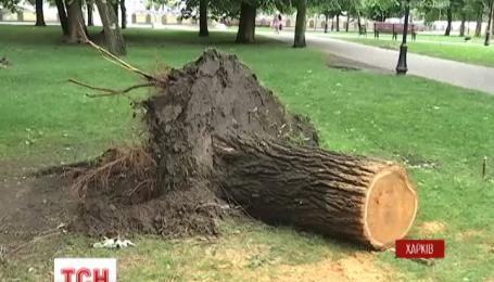 В Харьковской области ликвидируют последствия смертоносной стихии