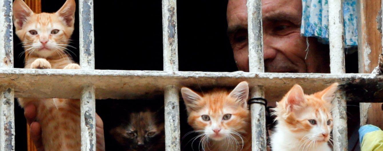 На Львівщині після перевірки закрили ізолятор тимчасового тримання