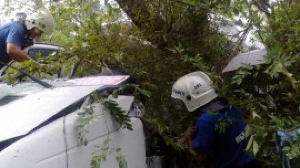 Аварія автобуса під Ростовом-на-Дону_2